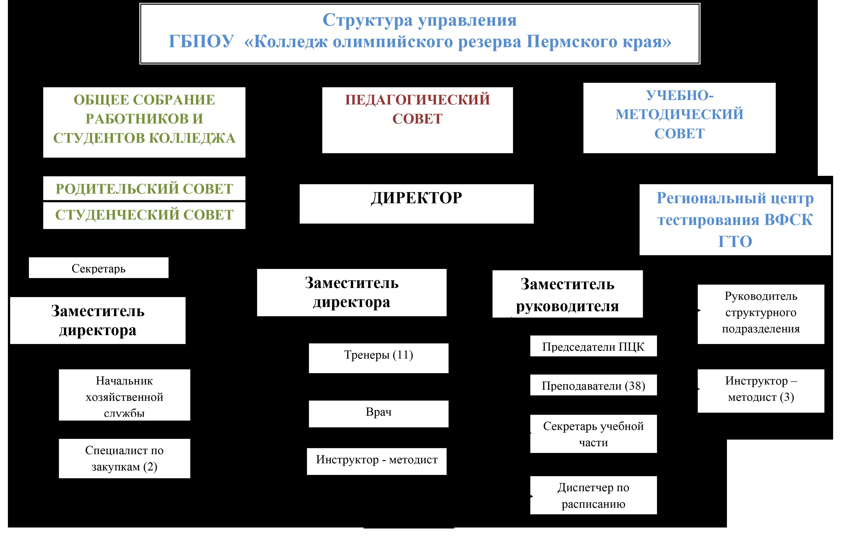 struktura_oy